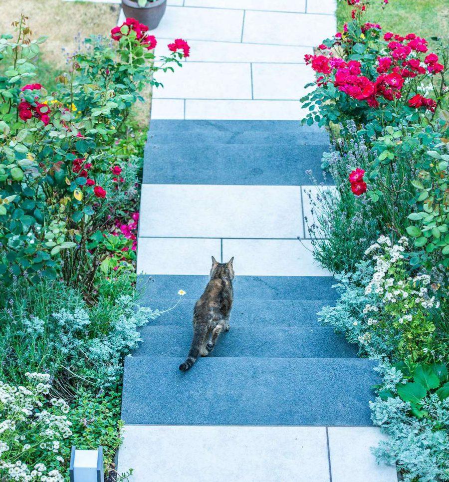 Treppe bei Gartengestaltung in Ratingen